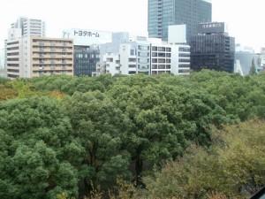 結婚相談所 名古屋 ブランシェ 窓からの風景1