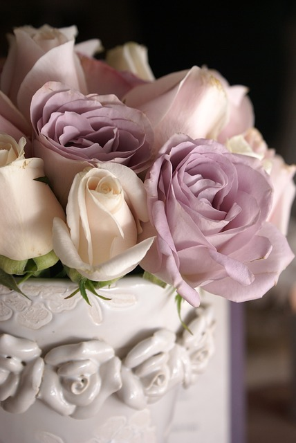 rose-495361_640
